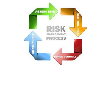 risk and capability assessment